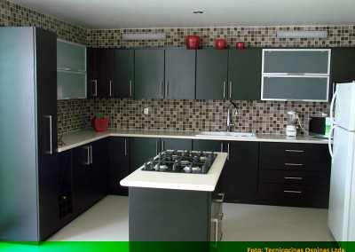 Cocina integral con sisla, puertas en vidrio y cubierta en caesarstone.
